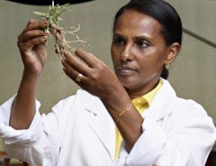 omen agricultural scientists – Sierra Express Media